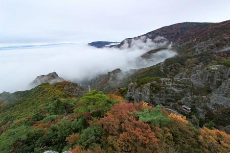 11.07紅葉と雲海.jpg