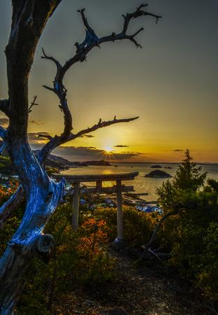 天空の鳥居in小豆島.jpg