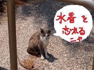 女木男木 058_Rnya.jpg
