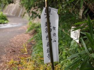 本島1 146_R.JPG