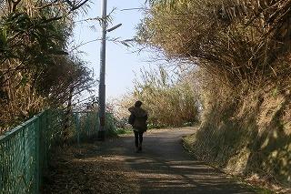 男木島2 047.jpg