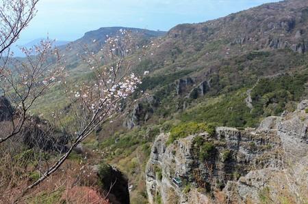 第一展望台より山桜とロープウェイ_21.04.03.JPG