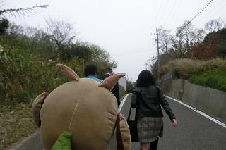 shami1 006.jpg