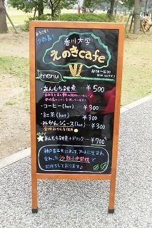 shami2 064.jpg