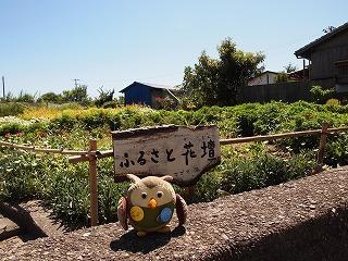takamiawa 048.jpg